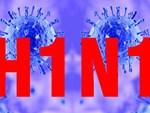 Liên tiếp những vụ tử vong do mắc cúm A/H1N1: Chuyên gia cảnh báo không được chủ quan-6