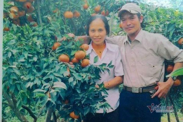 Đồi cam 6 tỷ kỳ lạ nhất Việt Nam, 2.000 cây mắc màn trắng cả rừng-3