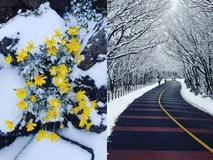 Sa Pa và những điểm ngắm tuyết đẹp nhất châu Á