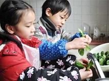 Cha mẹ Việt