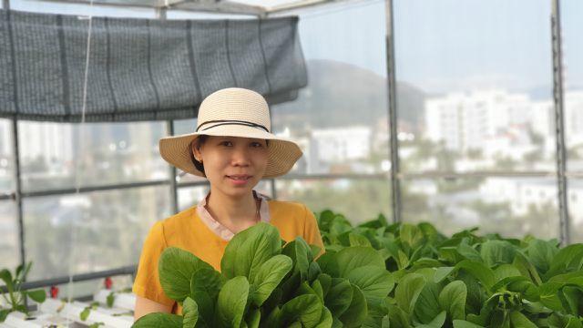 Vườn rau sân thượng, toàn cây khổng lồ của ông bố đảm Nha Trang-16