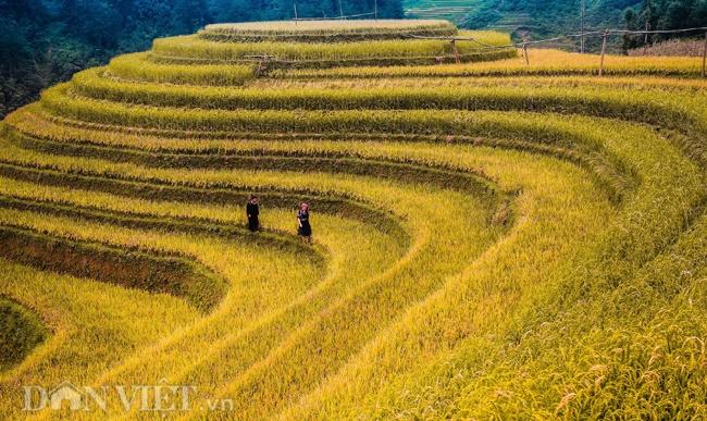 Những hình ảnh tuyệt đẹp về phong cảnh, thiên nhiên Việt Nam-7