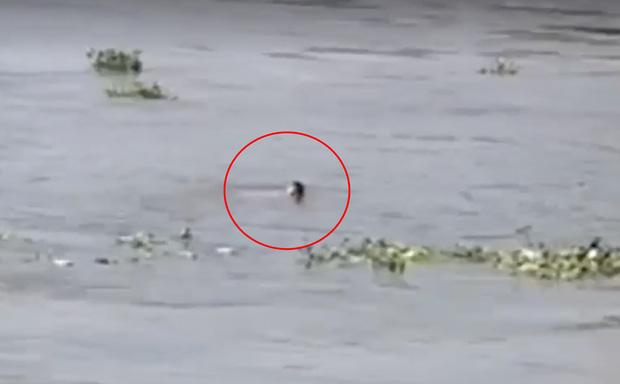 Nhảy từ cầu Sài Gòn xuống sông tự tử, nam thanh niên tự bơi rồi chới với kêu cứu-2