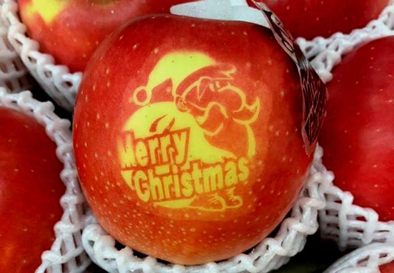 Táo Giáng sinh đỏ rực, 500 ngàn/quả mua tặng người thương-1