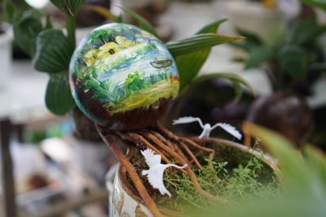 Xuất hiện dừa bonsai đột biến 2 màu cực lạ, hàng độc chơi Tết-11