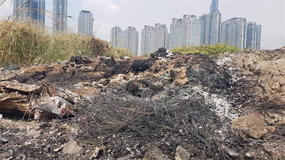 Đặc điểm nhận dạng nghi can giết người cướp tài sản rồi đốt xe phi tang ở Sài Gòn: Người Hàn Quốc, dáng thư sinh, da trắng, đeo kính cận-1