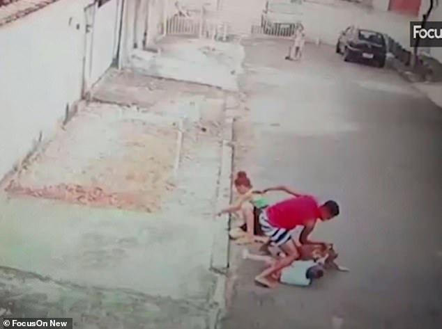 Giây phút đứng tim khi người đàn ông tay không cứu bé trai khỏi chó dữ và hành động gây phẫn nộ của bảo mẫu chứng kiến sự việc-1
