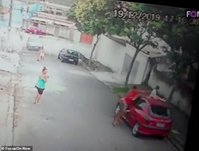 Giây phút đứng tim khi người đàn ông tay không cứu bé trai khỏi chó dữ và hành động gây phẫn nộ của bảo mẫu chứng kiến sự việc-2