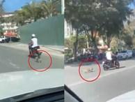 Xuất hiện clip người đàn ông kéo lê chú chó hàng trăm mét, con vật nhỏ bê bết máu trên đường khiến nhiều người phẫn nộ