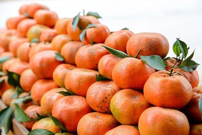 Mua cam Canh chỉ cần thuộc những đặc điểm này, đảm bảo cam mua chuẩn ngon, ngọt sắc-1