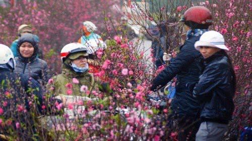 Thời tiết dịp Tết Nguyên đán Canh Tý 2020: Miền Bắc rét đậm, rét hại-1