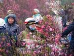 Dự báo thời tiết 4/1, Hà Nội đón nắng ấm đến hết tuần-2