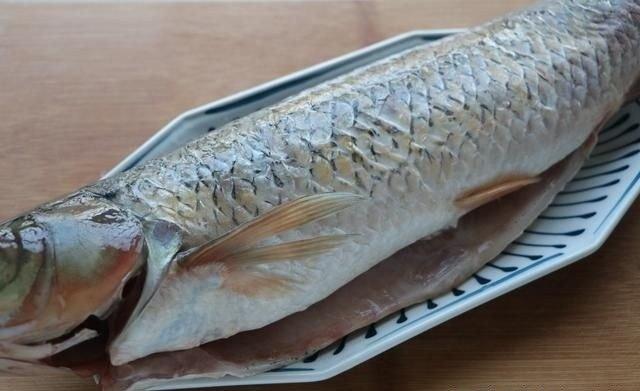 Đổ cá trắm và đậu phụ vào chung nồi, ai cũng mắng nhưng bỗng có món ngon không tưởng-3
