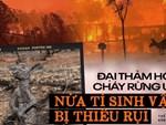 Sườn đồi đỏ như dung nham núi lửa trong thảm họa cháy rừng Australia-7