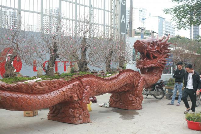 Ngắm chậu đào khủng Long quyện ngũ hành sơn giá bạc tỷ trên phố Hà Nội-2