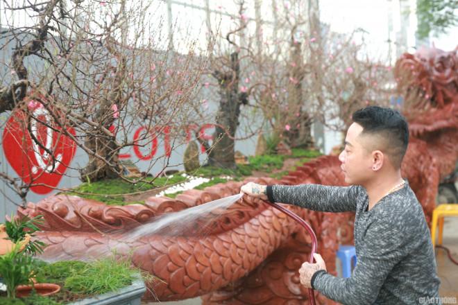 Ngắm chậu đào khủng Long quyện ngũ hành sơn giá bạc tỷ trên phố Hà Nội-7