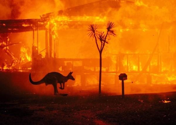 Mạng xã hội ngập ảnh bầu trời đỏ do cháy rừng ở Australia-1