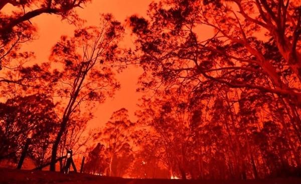 Mạng xã hội ngập ảnh bầu trời đỏ do cháy rừng ở Australia-5