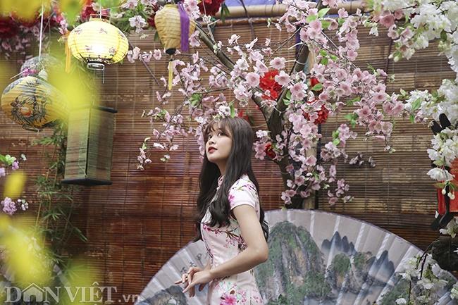 Giới trẻ Hà Nội rủ nhau check-in, chụp ảnh bên hoa đào ngày giáp Tết-4