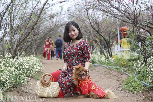 Giới trẻ Hà Nội rủ nhau check-in, chụp ảnh bên hoa đào ngày giáp Tết-9