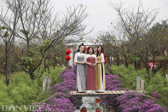 Giới trẻ Hà Nội rủ nhau check-in, chụp ảnh bên hoa đào ngày giáp Tết-10