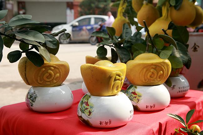 Bưởi Diễn hình thỏi vàng in chữ Tài - Lộc giá 1,5 triệu/cặp chơi Tết-1