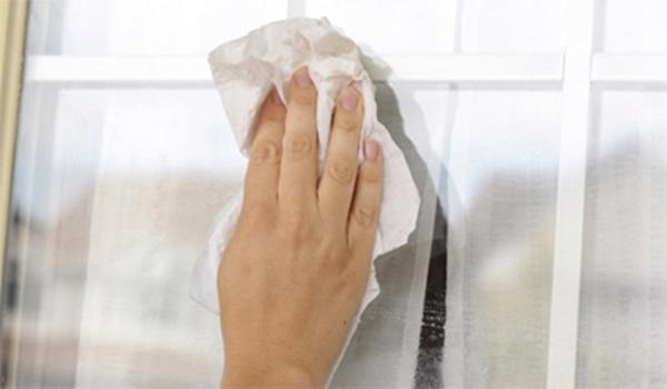 Bạn sẽ không vứt bã trà túi lọc sau khi phát hiện những công dụnghữu ích này-5
