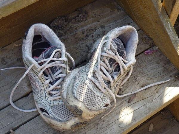 Dọn nhà đón Tết, vứt ngay 10 món đồ bức hại sức khỏe kẻo mắc bệnh ngay trong năm mới-2