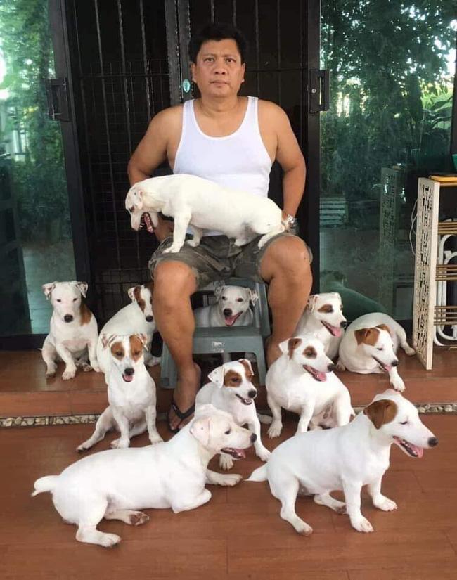 Anh chồng kêu khổ vì vợ cứ nằng nặc đòi nuôi 2 con chó, 3 năm sau kết cục xảy đến với anh khiến ai nấy câm nín-4
