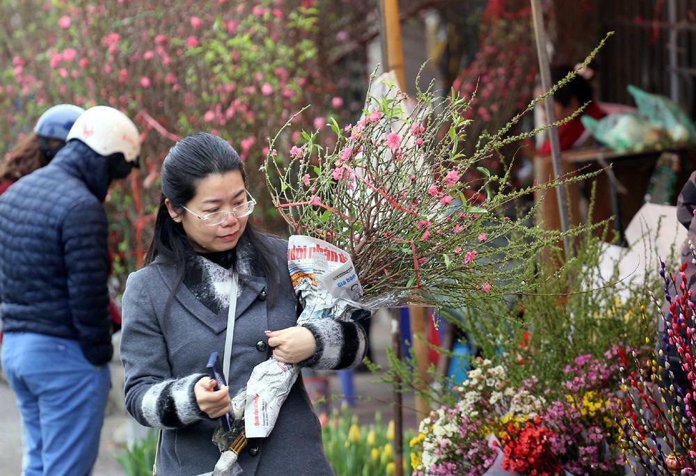 Tuần cuối trước Tết chợ hoa Quảng An đông nghẹt thở, người người đến sắm đào quất-4