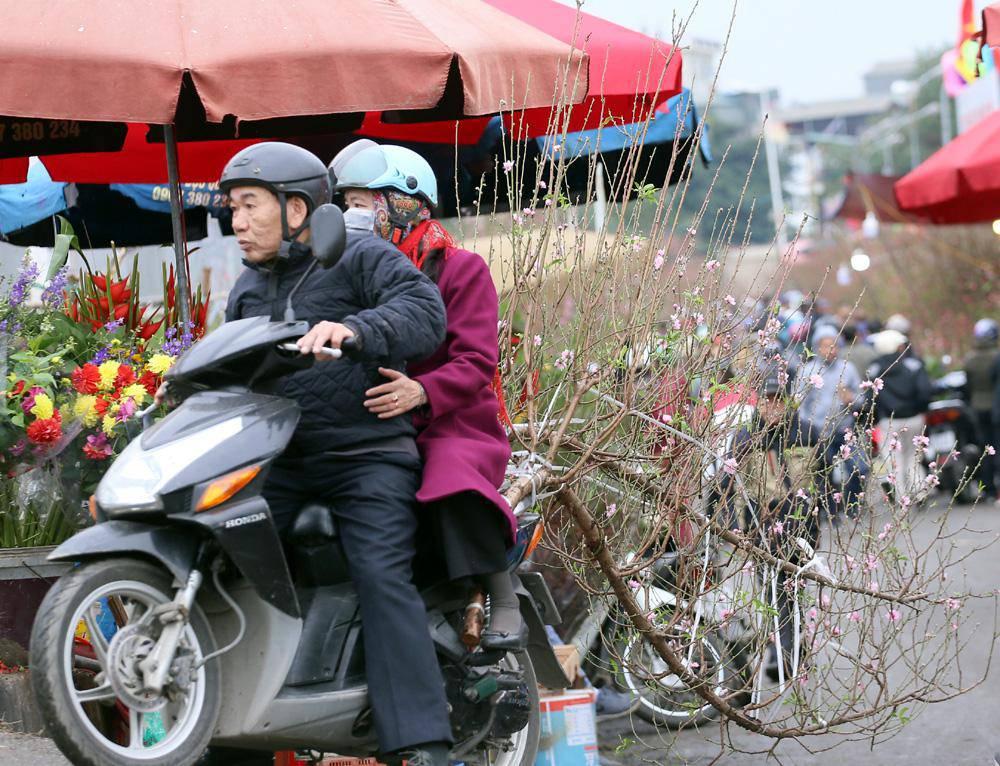 Tuần cuối trước Tết chợ hoa Quảng An đông nghẹt thở, người người đến sắm đào quất-12