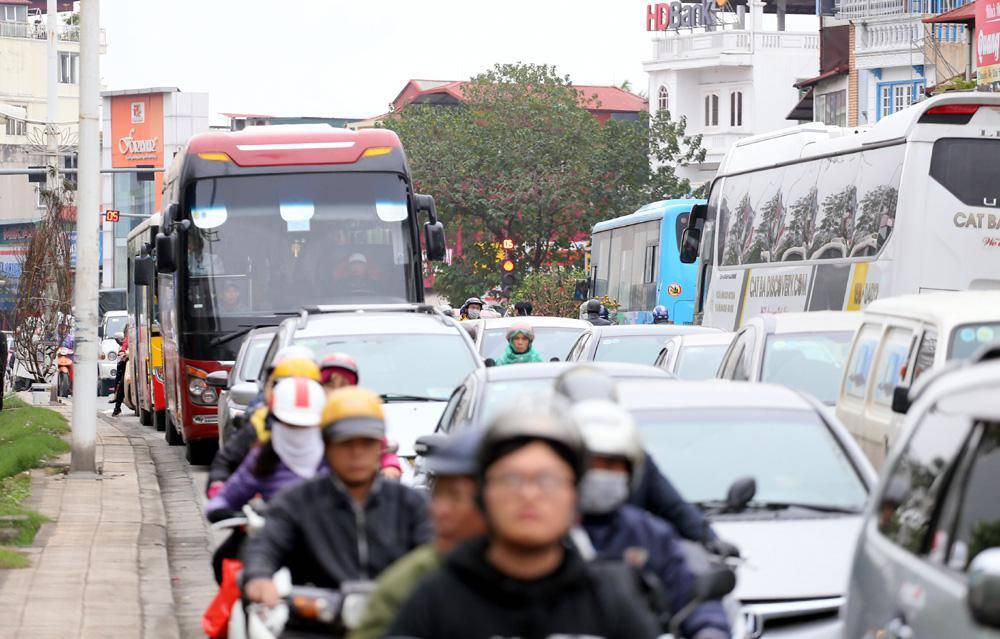 Tuần cuối trước Tết chợ hoa Quảng An đông nghẹt thở, người người đến sắm đào quất-13
