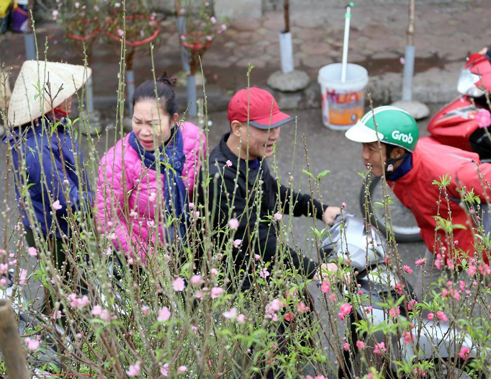 Tuần cuối trước Tết chợ hoa Quảng An đông nghẹt thở, người người đến sắm đào quất-8