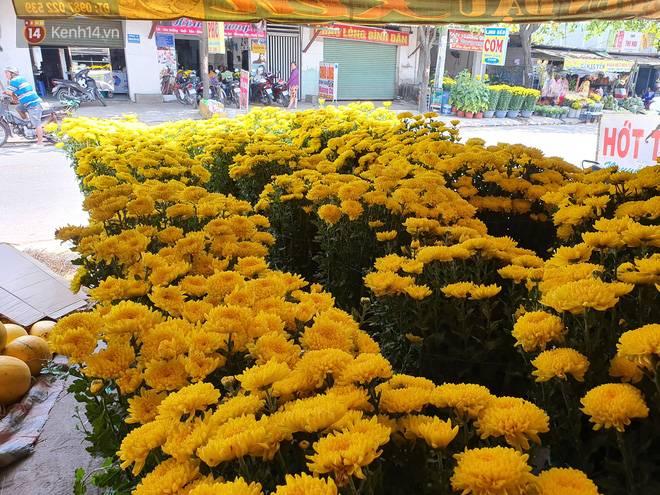 Chồng đột quỵ rồi mất trong lúc bán hoa Tết ở Sài Gòn, vợ cùng các con vội về đưa tang với hơn 2 tấn dưa còn nằm lại vỉa hè-3