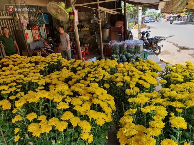 Chồng đột quỵ rồi mất trong lúc bán hoa Tết ở Sài Gòn, vợ cùng các con vội về đưa tang với hơn 2 tấn dưa còn nằm lại vỉa hè-7