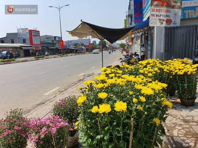 Chồng đột quỵ rồi mất trong lúc bán hoa Tết ở Sài Gòn, vợ cùng các con vội về đưa tang với hơn 2 tấn dưa còn nằm lại vỉa hè-10