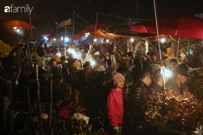Rạng sáng 28 Tết: Chợ hoa Quảng An đông nghẹt thở, người dân cùng thương lái tất bật thâu đêm-15