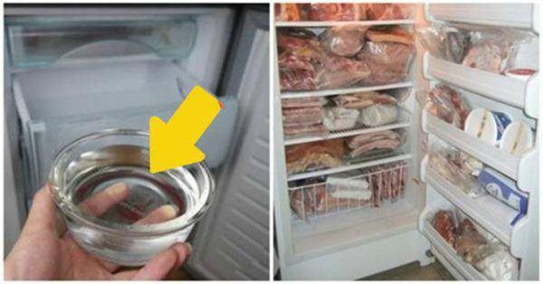 Đặt 1 đồng xu vào tủ lạnh, Tết ra cả nhà tròn mắt xem điều lạ-2