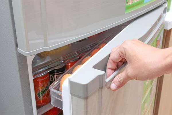 Đặt 1 đồng xu vào tủ lạnh, Tết ra cả nhà tròn mắt xem điều lạ-3