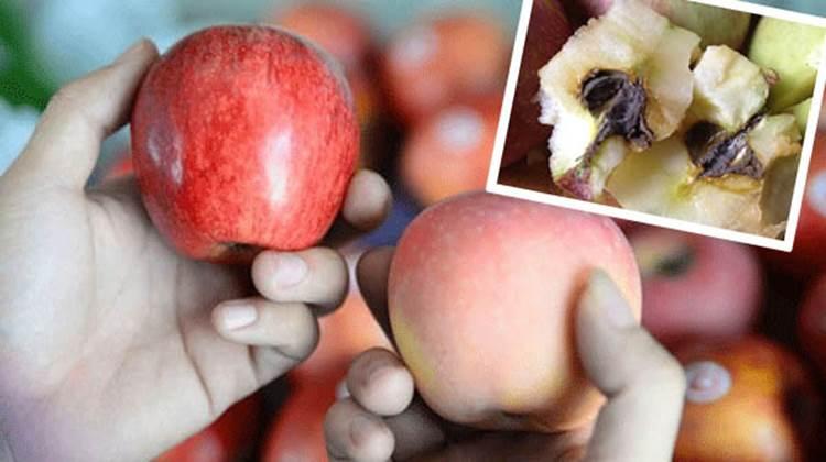 Mẹo hay giúp bảo quản trái cây mâm ngũ quả tươi lâu gấp 2, không cần dùng tủ lạnh-1