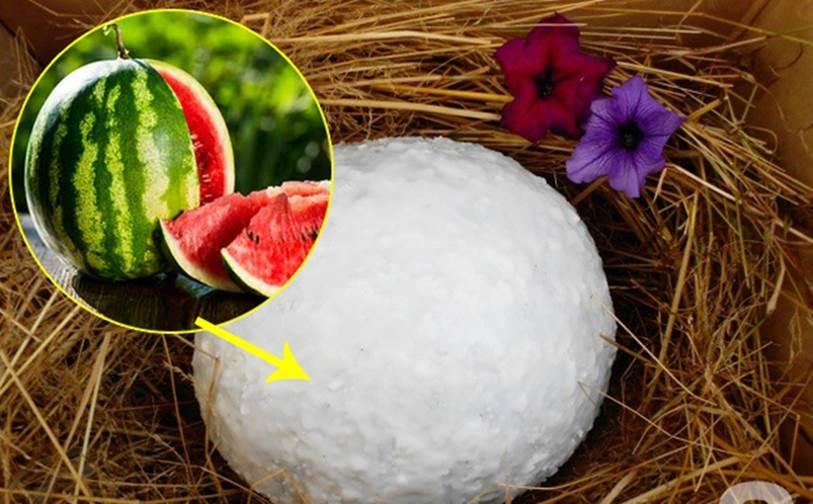 Mẹo hay giúp bảo quản trái cây mâm ngũ quả tươi lâu gấp 2, không cần dùng tủ lạnh-4