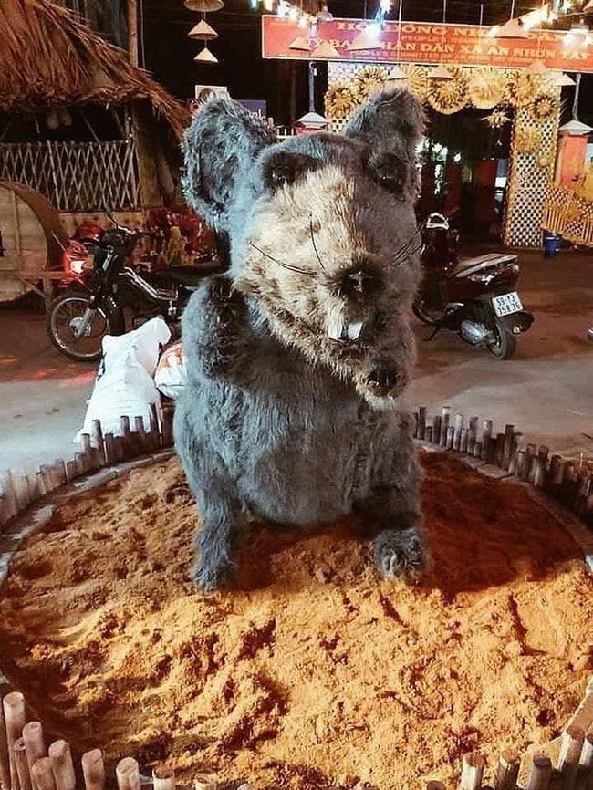 Linh vật chú chuột Canh Tý khiến nhiều người rùng mình sợ hãi ở Củ Chi đã chính thức được... make-up lại-2