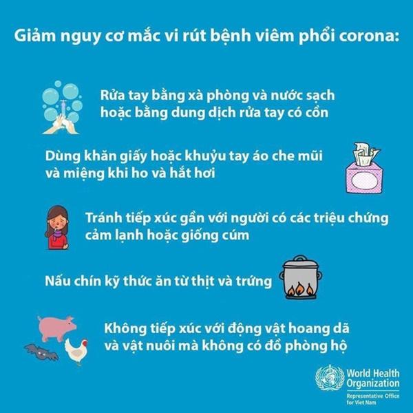 2 bố con người Trung Quốc nhiễm virus corona đã đi qua bao nhiêu tỉnh thành ở Việt Nam?-4