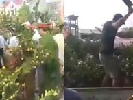 Người đàn ông cầm dao leo lên xe ô tô công vụ chặt các cây quất khi bị xử lý