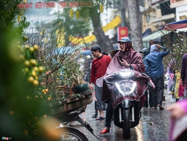 Người Hà Nội đội mưa mua đào, quất rớt giá chiều 30 Tết-6