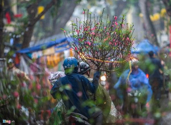 Người Hà Nội đội mưa mua đào, quất rớt giá chiều 30 Tết-11