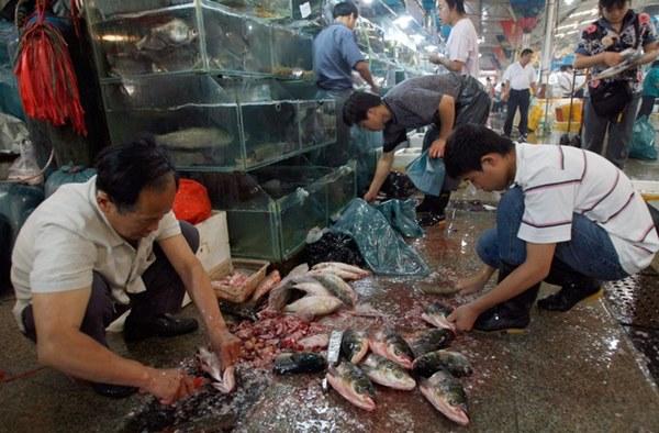 Bên trong khu chợ bùng phát virus corona tại Vũ Hán-1