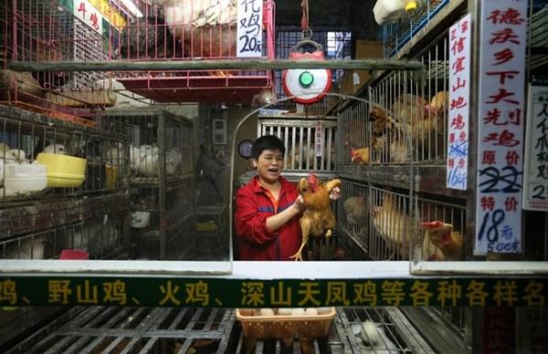 Bên trong khu chợ bùng phát virus corona tại Vũ Hán-11