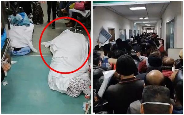 Rùng mình đoạn clip ghi lại cảnh tượng kinh hoàng trong bệnh viện Vũ Hán và lời cầu xin tuyệt vọng của nữ y tá-1