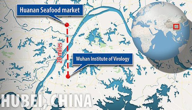 Virus Vũ Hán bị nghi là sản phẩm của phòng thí nghiệm, có liên quan đến chương trình chiến tranh sinh học của Trung Quốc-1